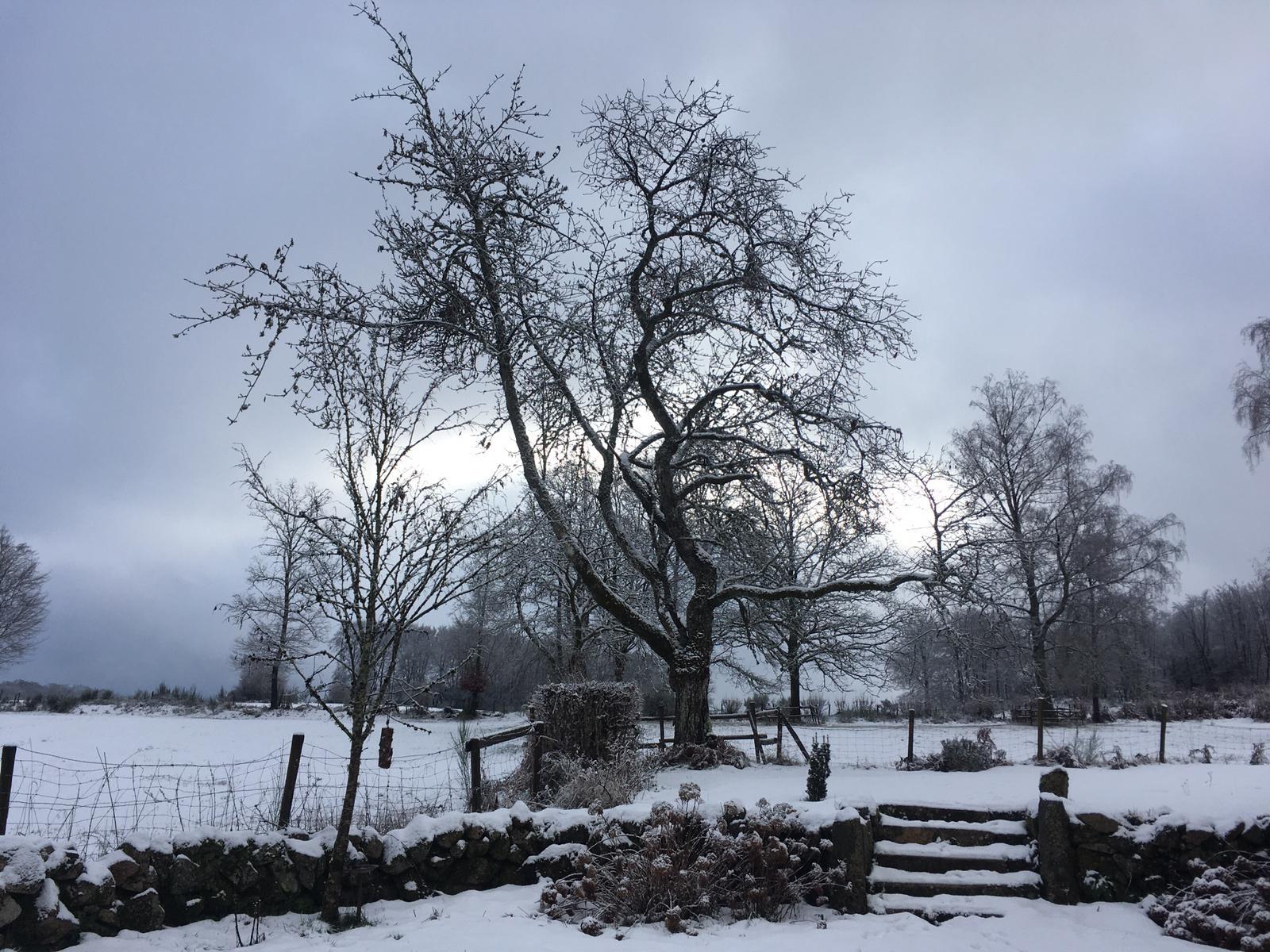 le brocard sneeuw 8