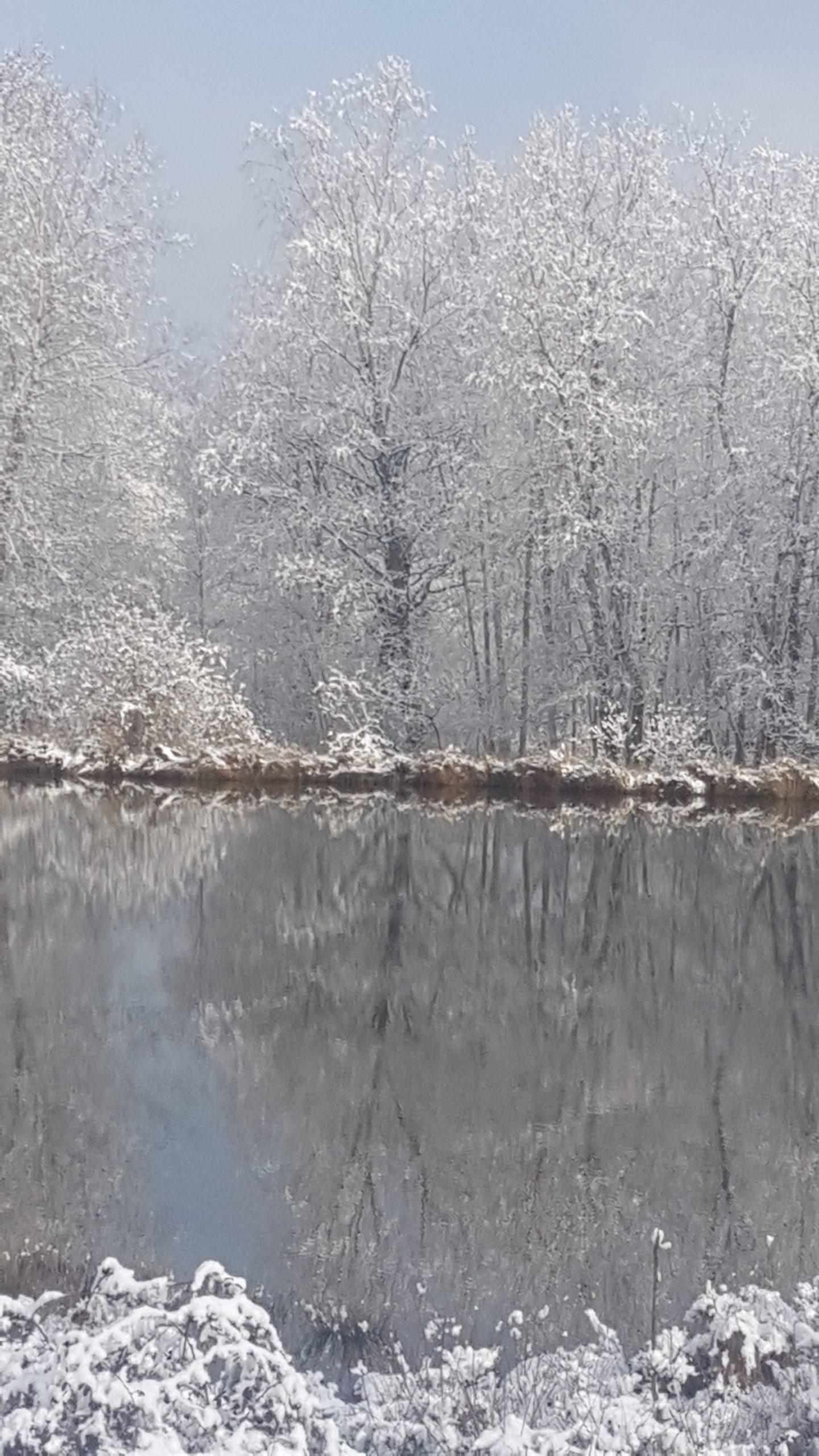 le brocard sneeuw en meerspiegeling